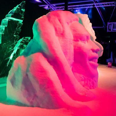 <strong>IJssculpturen</strong>